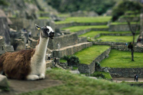 cuzco_machu_picchu_04-01